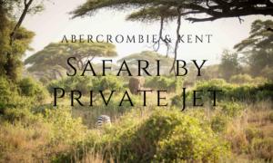 Safari by Private Jet